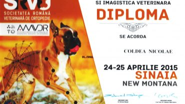 Congres ortopedie și imagistică veterinară